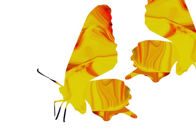 黄色い羽根は過去を予言する。