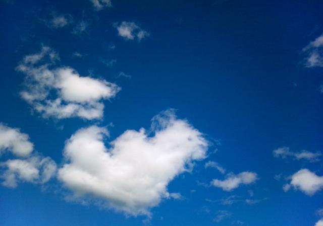 僕が壊れていく空の下できみが笑う。